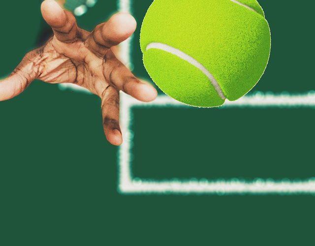 全豪オープン2016 錦織圭のツォンガ戦までの感想